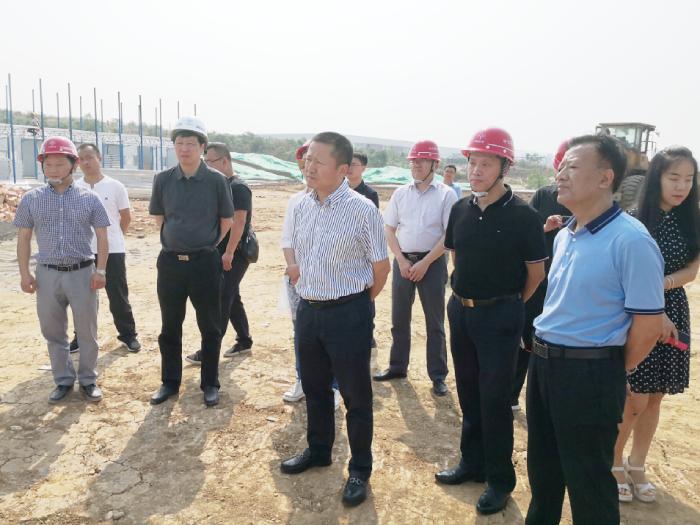马君调研新型显示产业园及玉龙院片区统建房项目推进情况